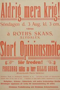 """""""Stort Opinionsmöte för freden"""" på Rots Skans i Älvdalen den 3 augusti 1924. Temat var """"Aldrig mera krig"""". Föredrag av Gillis Grähs. Älvdalens Fredsförening och Älvdalens Arbetarkommun arrangerade."""